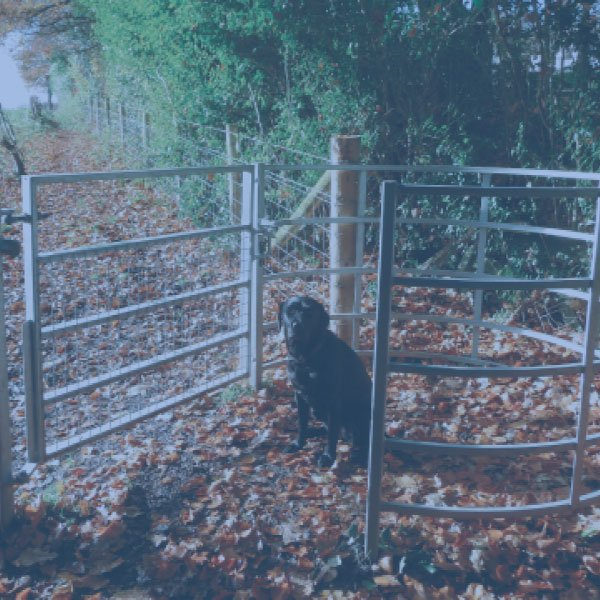 Row Gates