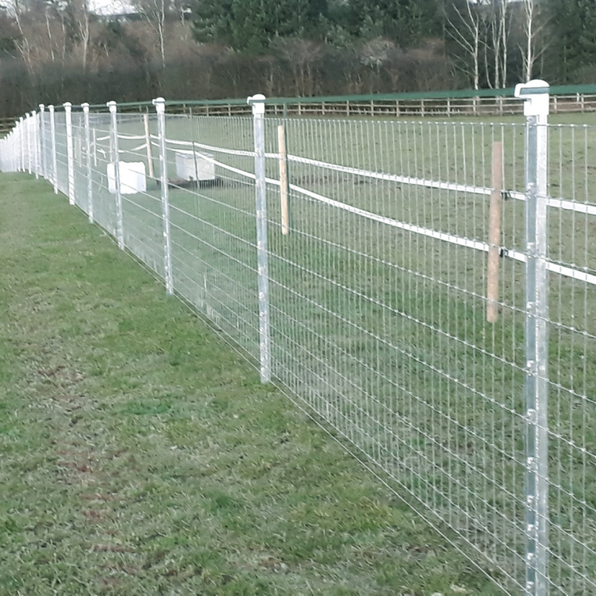 Triple X 1000m Horse Fence Package