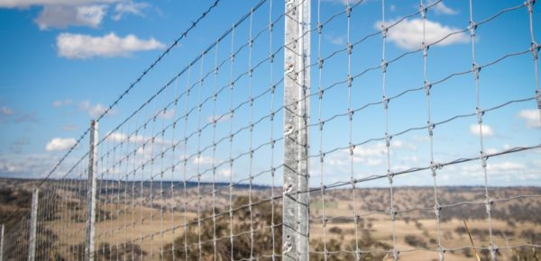 What makes Clipex a better fencing solution than its rivals?