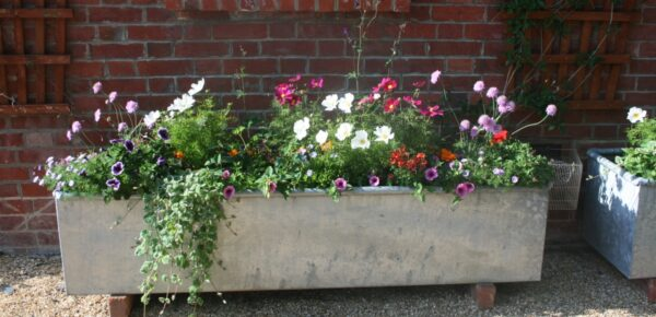 How To Create A Steel Trough Planter