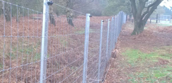 Deer Netting - Triple X Fencing
