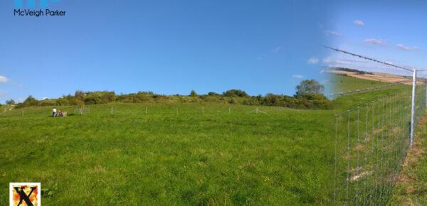 National Trust - Cissbury Ring