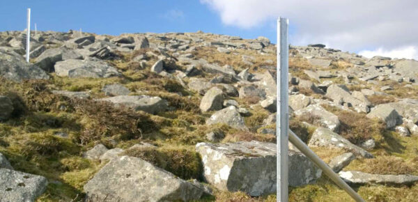 Clipex and RSPB - Protecting the Ring Ouzel on Dartmoor Tor