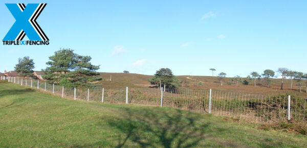 Cattle Fence - Triple X fencing