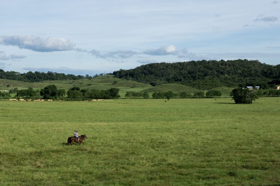 Riding a horse in an open space