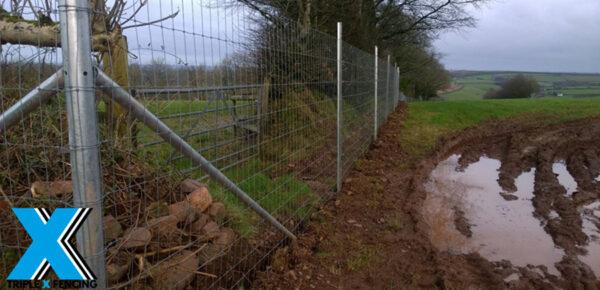 Dog / Boar Fence - Triple X Fencing