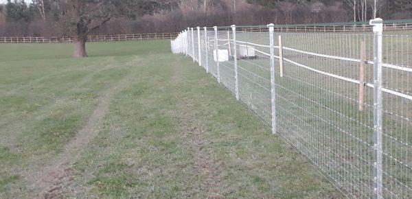 Horse Fence Case Study